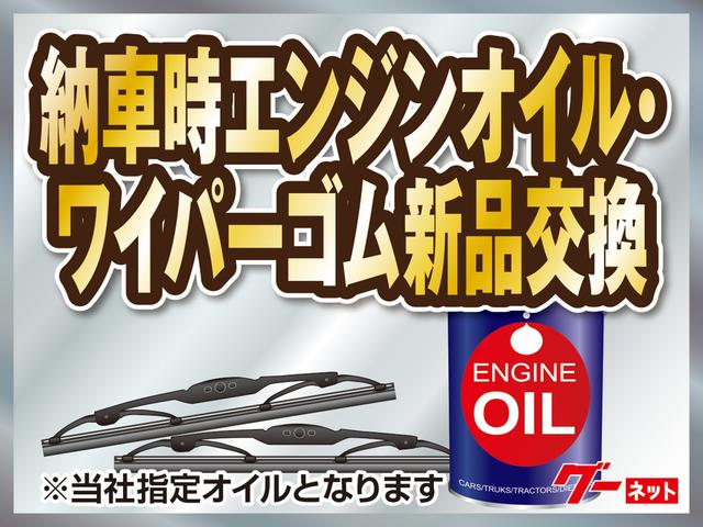VE ワンオーナー禁煙車 ナビTV バッテリー新品(47枚目)
