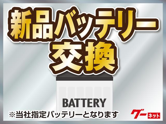 VE ワンオーナー禁煙車 ナビTV バッテリー新品(48枚目)
