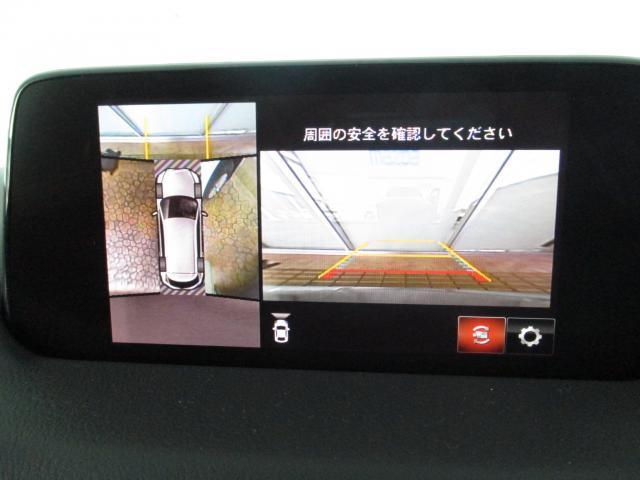 XDプロアクティブ XD-PROACTIVE 7人乗り 360°ビューモニター CD/DVD・地上デジ SDナビ ETC 衝突軽減ブレーキ アダプ(6枚目)