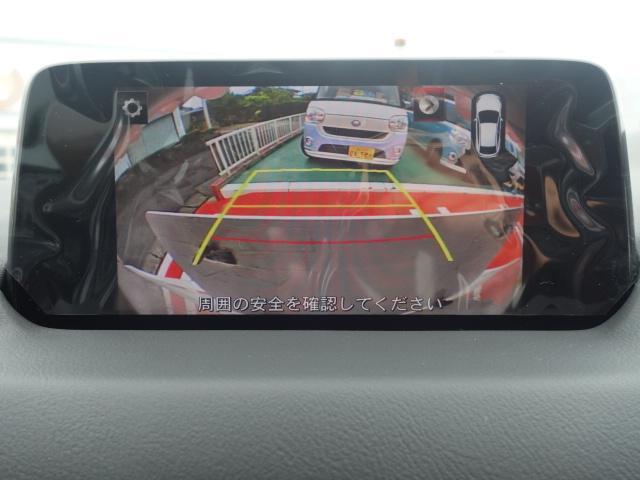 XD LEDライト バックカメラ 自動ブレーキ(18枚目)