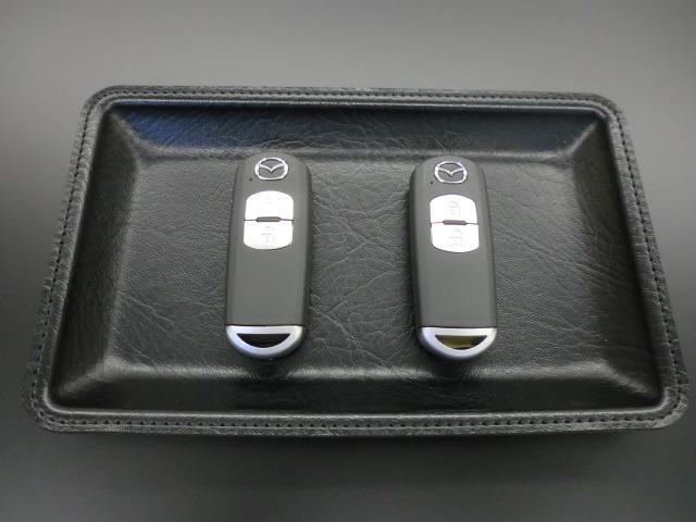 20SプロアクティブSパッケージ ナビ Bluetooth (20枚目)