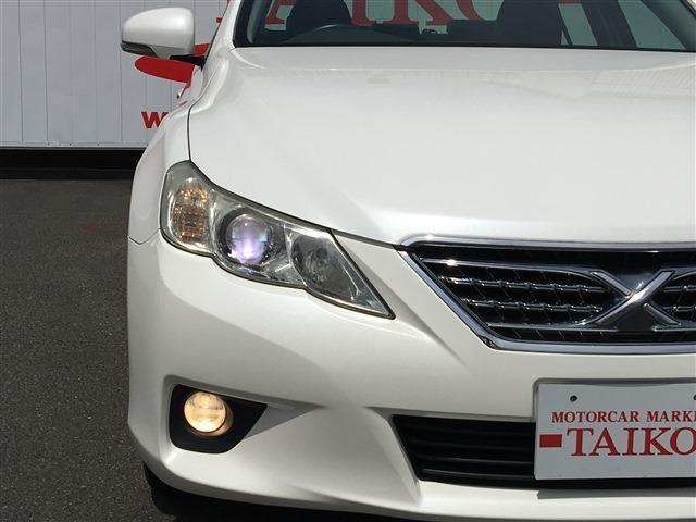 250G リラックスセレクション 新品タイヤ交換 ナビTV(30枚目)