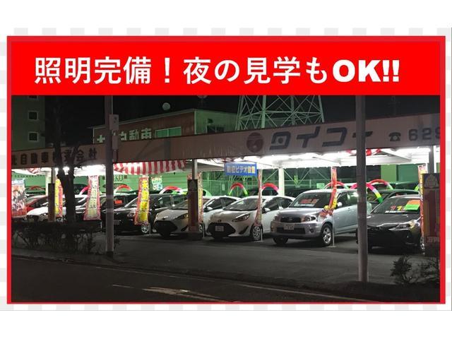 G ディグニスエディション レザーシート ガラスサンルーフ 純正ナビ(35枚目)