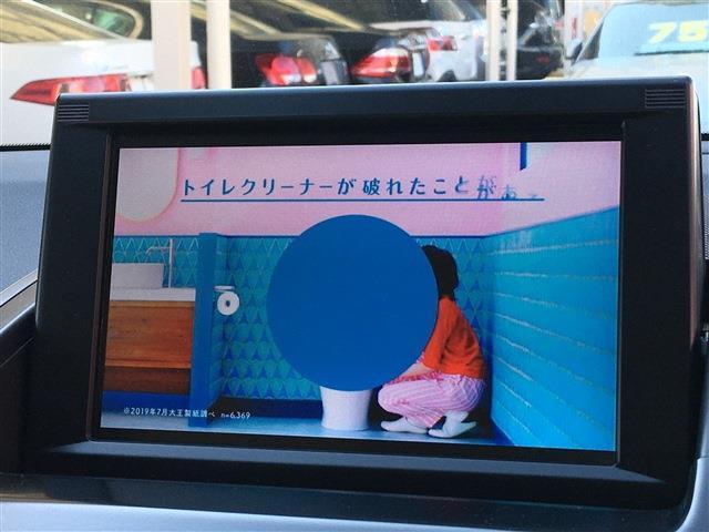 S Cパッケージ 純正ナビTV フロントバックカメラ クルコン ETC LEDライト(10枚目)