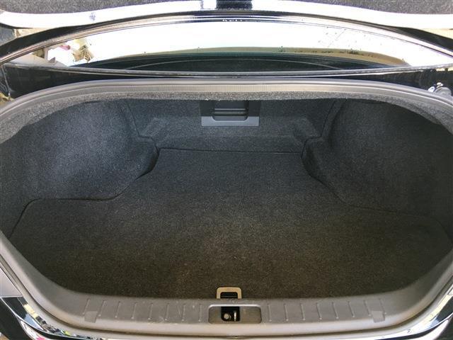 250GT Aパッケージ メーカーナビ バックカメラ ETC ドライブレコーダー(25枚目)