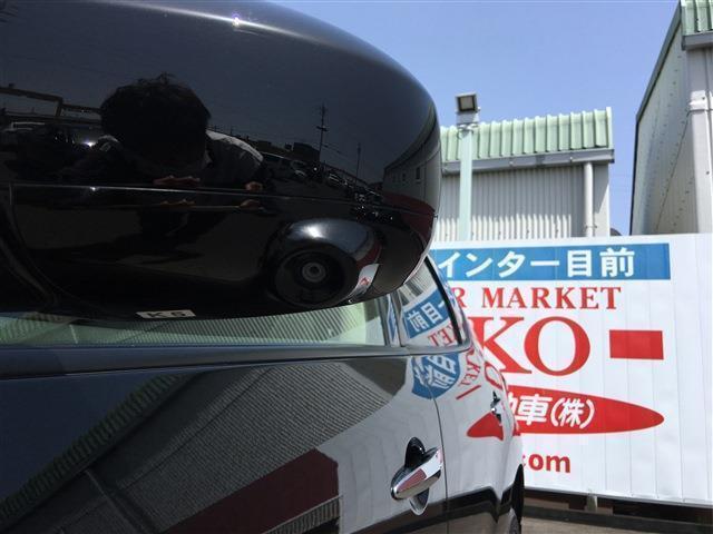 250XL ワンオーナー フルセグナビ バックカメラ プッシュスタート ETC(25枚目)