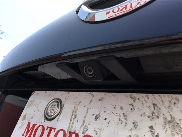 250XL ワンオーナー フルセグナビ バックカメラ プッシュスタート ETC(26枚目)