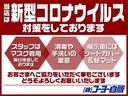 ロングDX 純正メモリーナビ・ワンセグTV・ETC・キーレス・キャリア(35枚目)