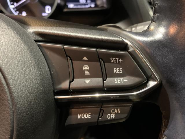 15XD-Lパッケージ 2WD 6AT メモリーナビ 衝突被(16枚目)