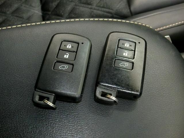 プレミアム AHB LDA メモリーナビ ETC LEDヘッドライト 電動バックドア クルーズコントロール 禁煙車 ワンオーナー(14枚目)