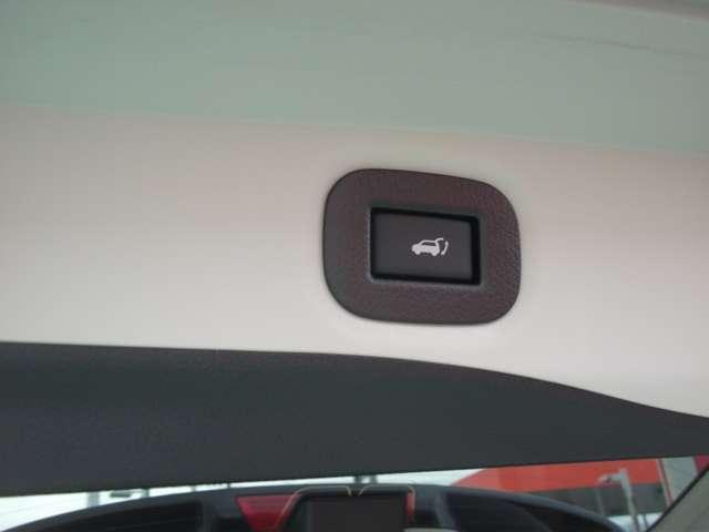 20Xi Vセレクション 2列車 弊社試乗車10インチナビ アラウンドビュモニター プロパイロット 前席パワーシート シートヒーター ルーフレイル LEDオートライト(14枚目)