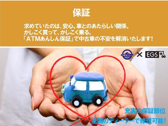 X ナビ フルセグTV オートAC スマートキー(44枚目)