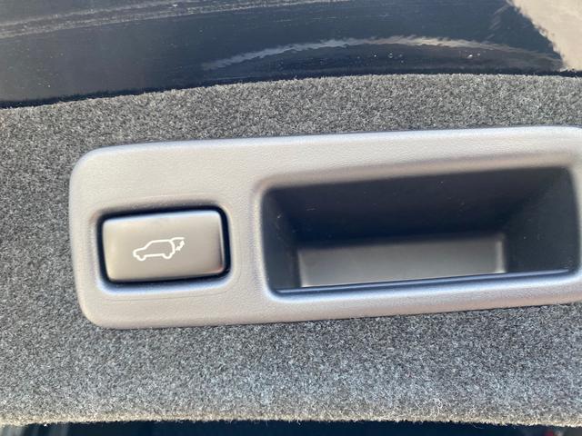 プレミアム スタイルモーヴ アルパイン9インチナビ バックアイカメラ RAYS20AW TEIN車高調 ドライブレコーダー モデリスタフルエアロ(32枚目)