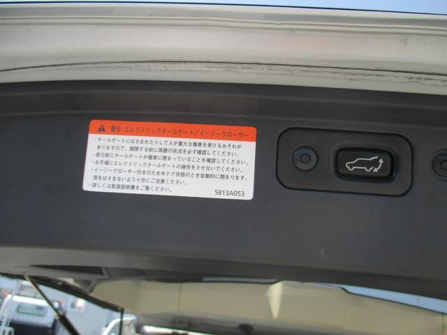 G プレミアム 4WD 両側パワースライド パワーバックドア(10枚目)