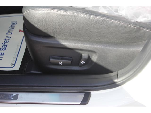250G SパッケージリラックスSE レオンハルト20インチ(53枚目)