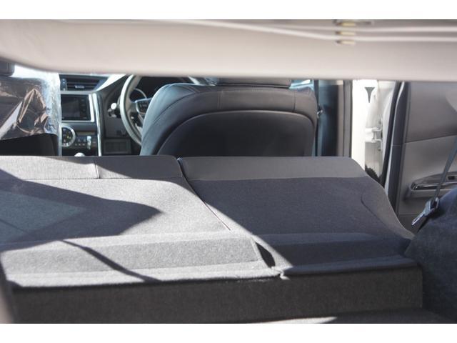 250G SパッケージリラックスSE レオンハルト20インチ(56枚目)