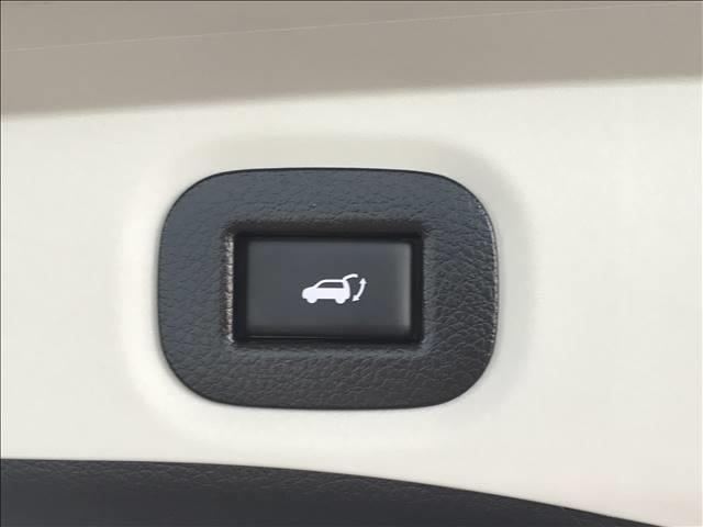 20X エクストリーマーX 純正ナビ地デジ 衝突軽減 クルコン バックカメラ ETC ルーフレール 電動トランク LEDライト(8枚目)