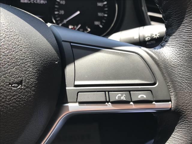 20X エクストリーマーX 純正ナビ地デジ 衝突軽減 クルコン バックカメラ ETC ルーフレール 電動トランク LEDライト(12枚目)