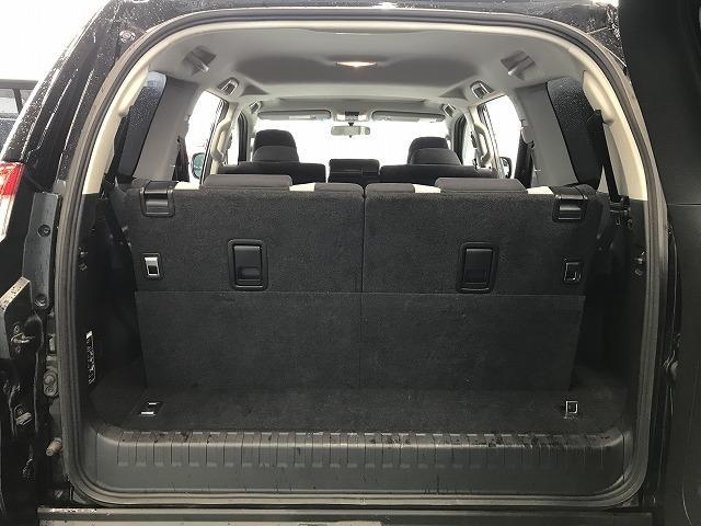 TX アルジェントクロス フルセグSDナビ バックカメラ サンルーフ ビルトインETC 専用アルミ 専用ルーフレール 専用シート LEDヘッドライト 7人乗り クルコン 特別仕様車(28枚目)