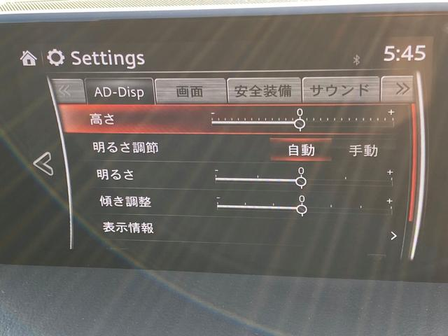 XD プロアクティブ フルセグ純正ナビ DVD再生 バックカメラ レーダークルーズ コーナーセンサー スマートキー ETC ブルートゥース(35枚目)