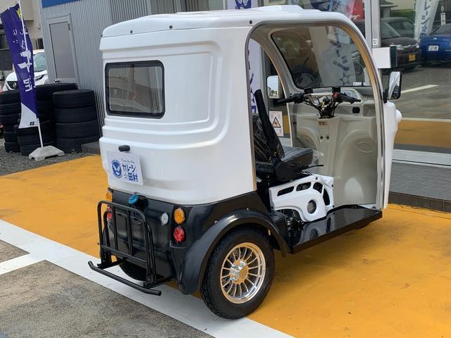 AP trikes125 新車 遠心クラッチ式4AT 3人乗(8枚目)