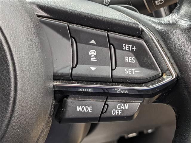 レーダークルーズコントロール付き。前車追従型です。