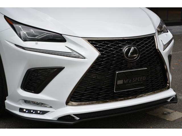 NX300 Fスポーツ ZEUS新車カスタムコンプリートカ-(11枚目)