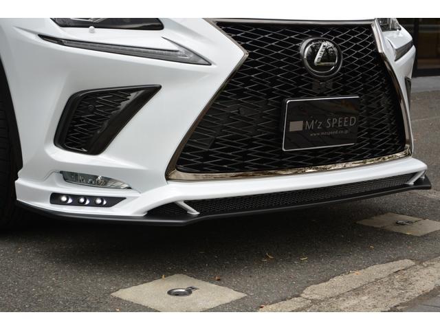 NX300 Fスポーツ ZEUS新車カスタムコンプリートカ-(12枚目)