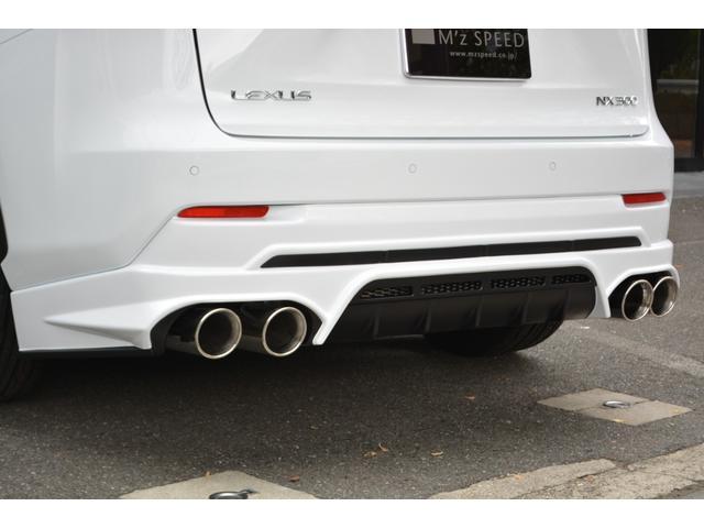 NX300 Fスポーツ ZEUS新車カスタムコンプリートカ-(13枚目)