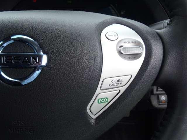 X サンクスエディション(30kwh) 衝突軽減ブレーキ ハンドルヒーター 前後シートヒーター メモリーナビ フルセグTV バックカメラ LEDライト(8枚目)