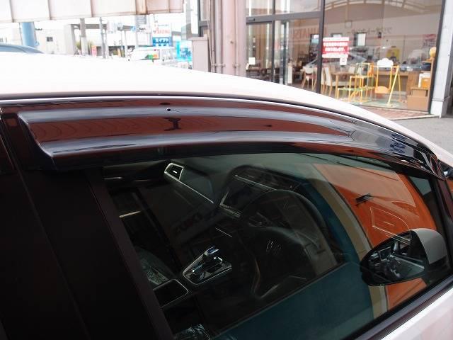 ハイブリッドX 4WDプッシュスタートLEDヘッド フォグ(19枚目)