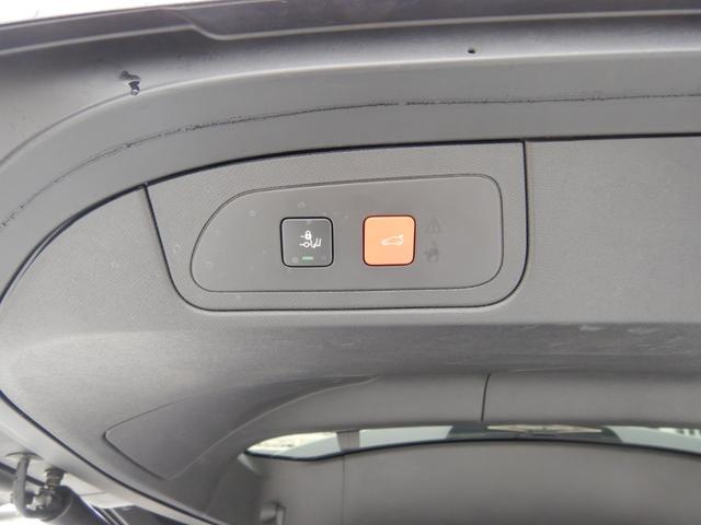グランシック ピュアテック RIVOLIインテリア カロッツェリア製純正ナビ&フルセグTV 登録済未使用車(17枚目)