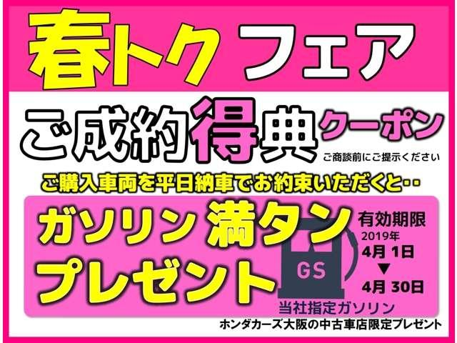 13G・L ホンダセンシング 当社デモカー メモリーナビ(18枚目)