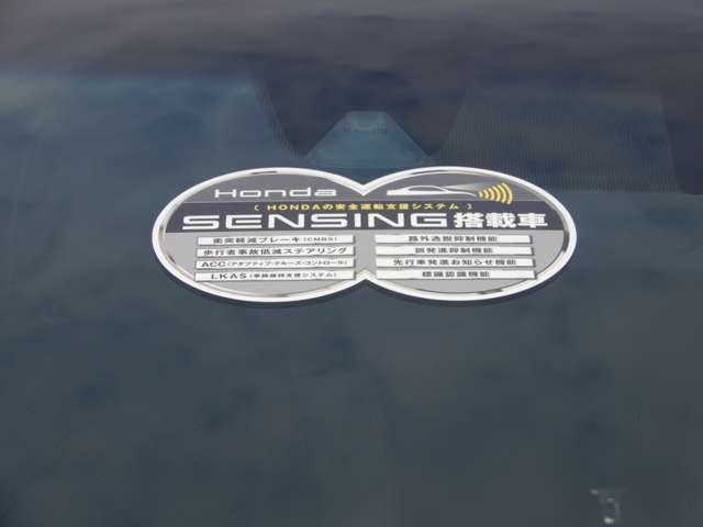 RS・ホンダセンシング デモカー ETC フルセグ リアカメ(5枚目)