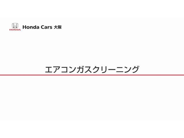 L ホンダセンシング 当社デモカー Mナビ フルセグ ETC(53枚目)