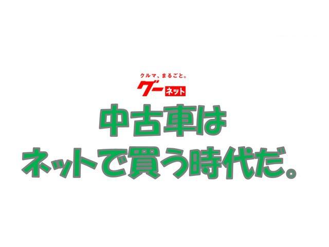 G SAII 衝突軽減ブレーキ パノラマビューモニター(17枚目)