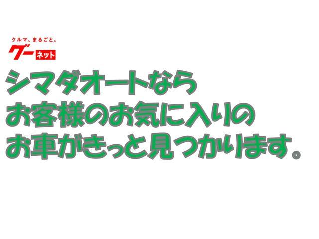 G SAII 衝突軽減ブレーキ パノラマビューモニター(19枚目)