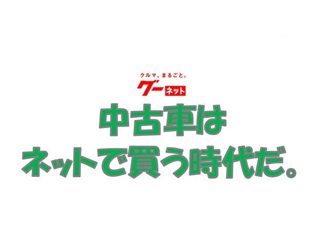 G 純正ディスプレイオーディオ バックカメラ ETC(18枚目)