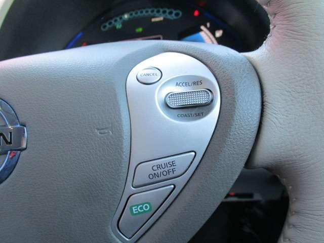 長距離運転に便利なオートスピードコントロールは一定のスピードで巡行できるので電費の節約にも役立ちます。
