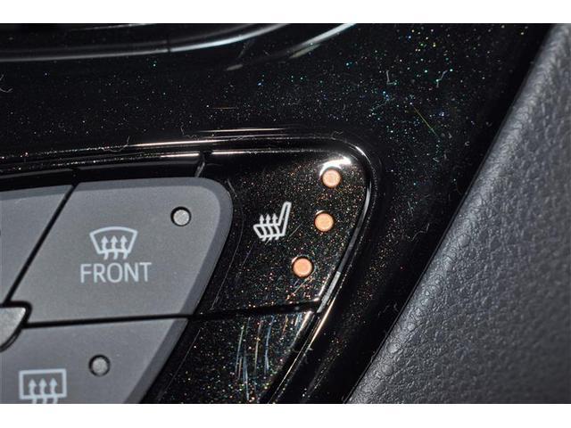 G LEDエディション フルセグ DVD再生 バックカメラ 衝突被害軽減システム ETC LEDヘッドランプ(16枚目)