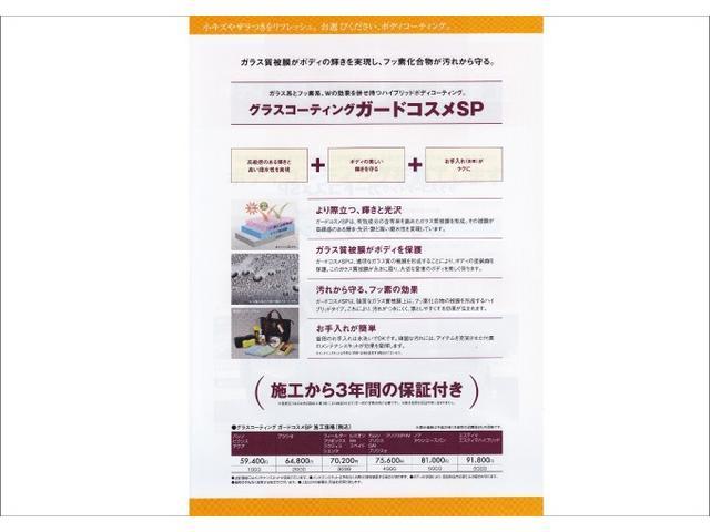アイル HDDナビ DVD再生 ミュージックプレイヤー接続可 バックカメラ HIDヘッドライト ワンオーナー(48枚目)