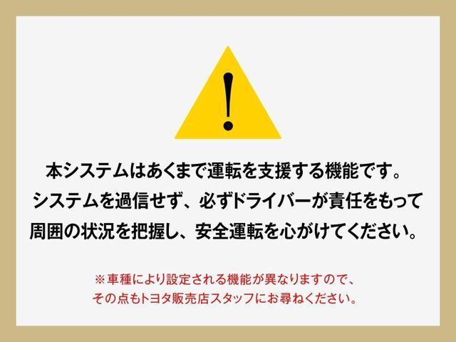 Sスタイルブラック スマートキ- イモビライザー 1オーナー(49枚目)