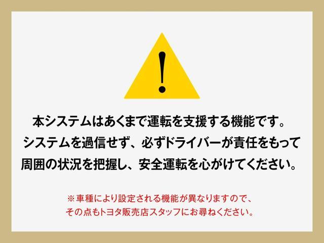 F 衝突被害軽減ブレーキ メモリーナビ ワンセグTV ETC(48枚目)