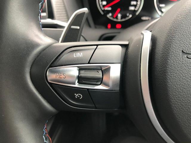 エディションブラックシャドウ 100台限定車・カーボンミラーカバー・専用19インチAW・ブラックキドニー・純正HDDナビ・LEDヘッドライト・ワンオーナー・カーボンディフューザー・Mブレーキ・黒革・シートヒーター・F87(14枚目)