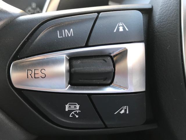 320d Mスポーツ ・アクティブクルーズコントロール・コンフォートアクセス・オプションホイール・LEDヘッドライト・ブラックレザー・シートヒーター・バックカメラ・PDCセンサー・純正HDDナビ・シートヒーター・F30・(16枚目)