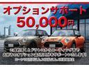 クロスオーバー ノーフォークエディション レザレットシート・限定車・ブレーキ軽減・Bカメラ・PDCセンサー・LEDヘッドライト・ミラーETC・シートヒーター・オートトランク・SOSコール・ピクニックベンチ・アクティブクルーズコントロールF60(3枚目)