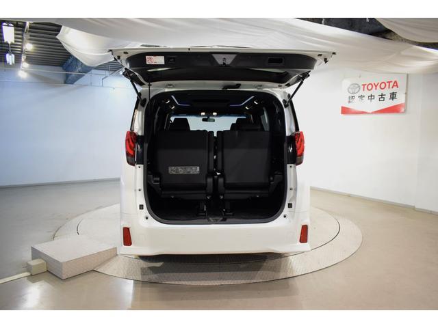S A タイプBL フルセグ メモリーナビ DVD再生 バックカメラ ETC 両側電動スライド LEDヘッドランプ 乗車定員7人 3列シート フルエアロ(7枚目)