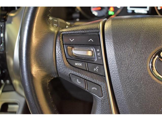 S A タイプBL フルセグ メモリーナビ DVD再生 バックカメラ ETC 両側電動スライド LEDヘッドランプ 乗車定員7人 3列シート フルエアロ(18枚目)