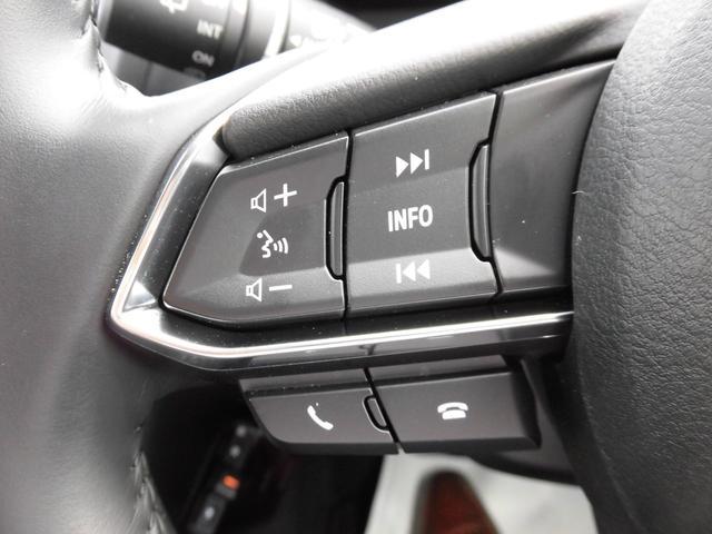 15XD プロアクティブ レンタカーUP車(13枚目)
