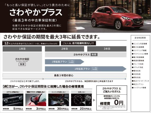 2.0 20S シルク ベージュ セレクション ナビ・バック(20枚目)